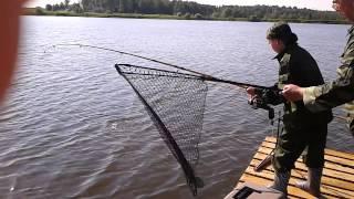 Отчеты о рыбалке в рыбхозе генезис