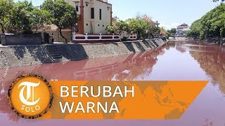 Viral Air Sungai di Denpasar Berubah Warna Jadi Merah Ternyata Ini Sebabnya