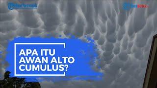 Apa Itu Awan Alto Cumulus? Ini Pengertian dan Proses Terbentuknya