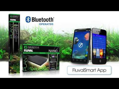 Manufacturer video - Instructions for the FluvalSmart App (EN)