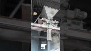 Aplatissage de grains de méteil