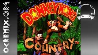 Donkey Kong Country OC ReMix by Bryan EL: