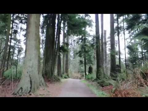 Video My top 10 places in Vancouver