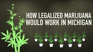 How legalized marijuana would work in Michigan