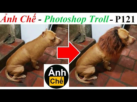 💥Ảnh Chế  – Photoshop Troll (P 121), Fjamie013