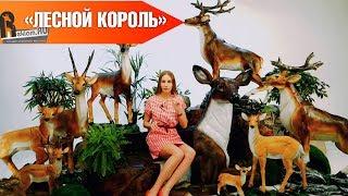 """""""Лесной король"""" 👑Скульптуры оленей для парков и скверов"""