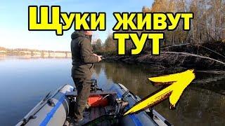 Осенния рыбалка на щук