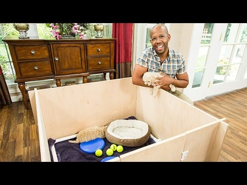 How To - Ken Wignard's DIY Whelping Puppy Box - Hallmark Channel