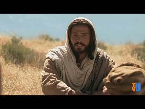 Chúa là tất cả đời con – Chúa nhật XIII Thường niên C
