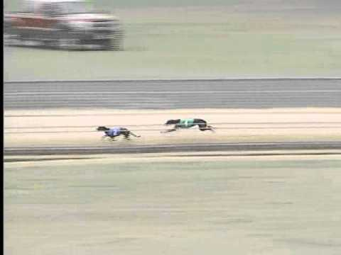 Race 72
