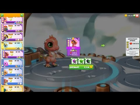 [Dinnertime] Upgrade Pixie Dragon - Dragon Mania Legends