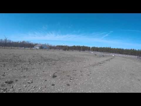Footing for Training Area for Draft Horse Rescue