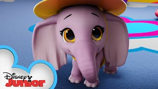 Elephant In The Room 🐘   T.O.T.S.   Disney Junior