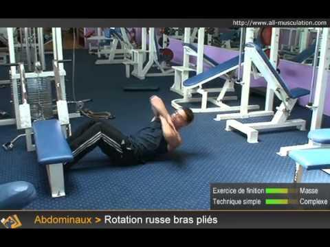 Les aspects des muscles et les exemples