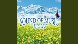 "My Favourite Things (Instrumental Version) (From ""The Sound of Music"")"
