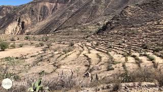 Terrassen im Colca Canyon