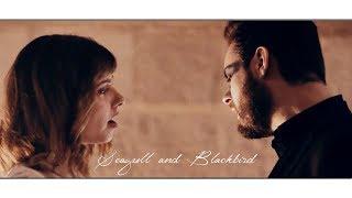 """Nouveau clip """"Seagull & Blackbird"""" pour Julien LOko"""
