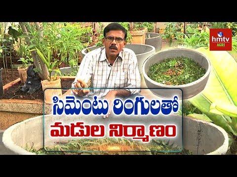 మిద్దె తోటల్లో రింగుల పద్ధతి | Terrace Gardening | hmtv Agri