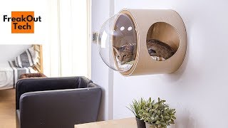 5 Amazing Cat Inventions You Must See