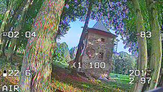 Fpv DVR - devil diatone gt r369 SX and trees