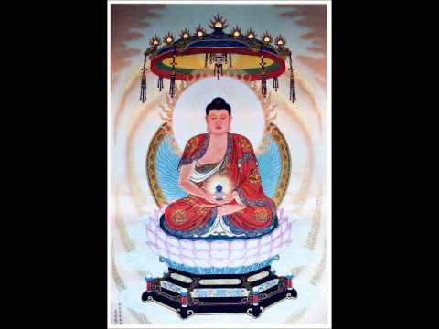 82/143-A Nan thuật lại chổ mình ngộ và cầu Phật chỉ dạy pháp tu hành