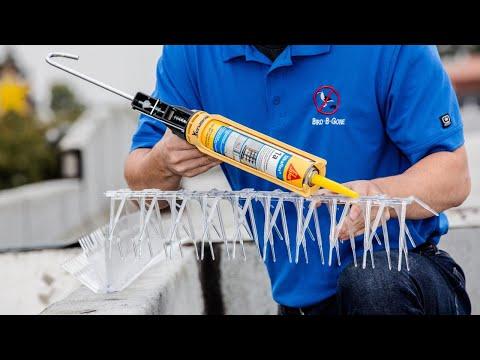 Installing Bird Spikes
