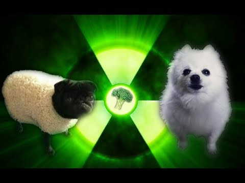 Imagine Doggos - Radioactive
