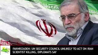 UN unlikely to take action on Iranian scientist killing