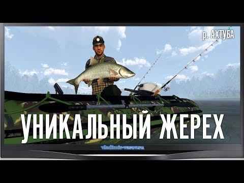 The Fisherman - Fishing Planet. Уникальный Жерех. р. Ахтуба.