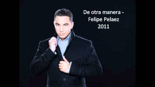 Demasiado tarde - Felipe Pelaez - (De otra manera)