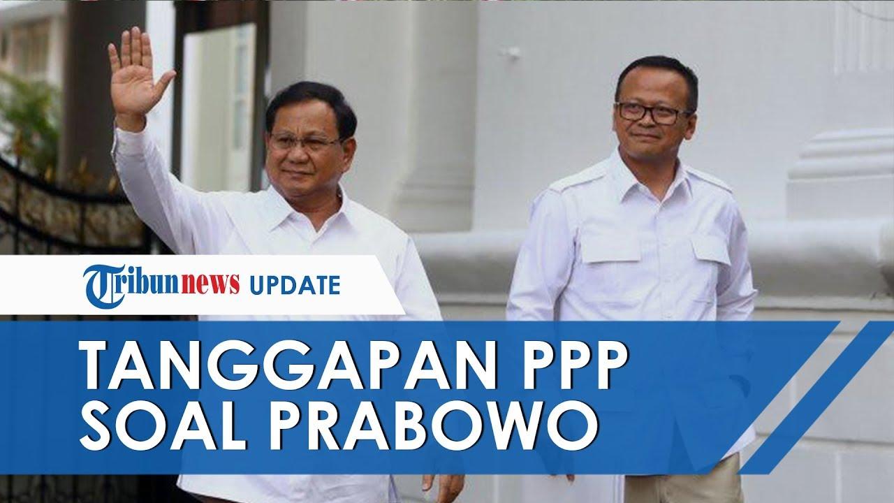 Komentar PPP soal Prabowo yang Siap Bantu di Kabinet Kerja Jilid II, Baidowi: Tak Akan Tikung Jokowi