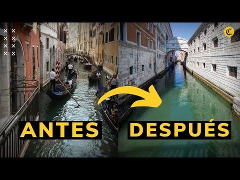 El Gran Canal De Venecia Sin Humanos Ante La Cuarentena Por Coronavirus