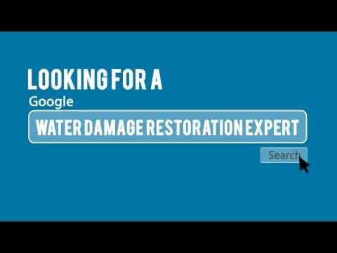 Denver Mold Damage Restoration (303) 646-2162 | Denver Water Damage Team