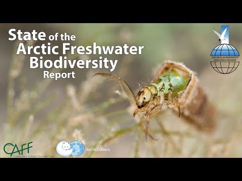 Film: State of the Arctic Freshwater Biodiversity Report
