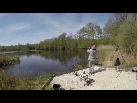 Customer Video: First Carp in 30 Years, Jun 2017