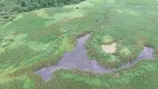 DJI Phantom 3 Drone Footage North of Cadott Wisconsin