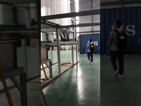 Video clip 5