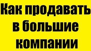 Владимир Якуба - Как продавать в большие компании
