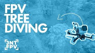 FPV TREE DIVING