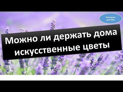 Можно ли держать дома искусственные цветы