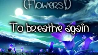 Evanescence- Imaginary (origin's version) lyrics