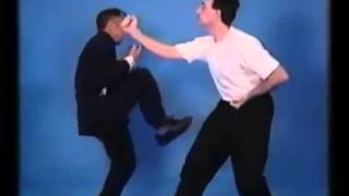 Wing Chun: Ip Chun: Wooden Dummy Techniques and Applications
