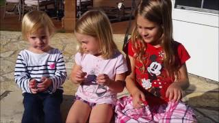 Little Life Performances: The Itsy Bitsy Spider