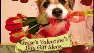 Jesse's Valentine's Day Gift Ideas for Your Dog