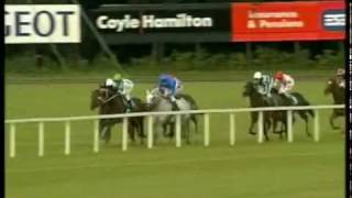 Godolphin Greats - 6 - DAYLAMI - G1 ESAT DIGIFONE CHAMPION STAKES