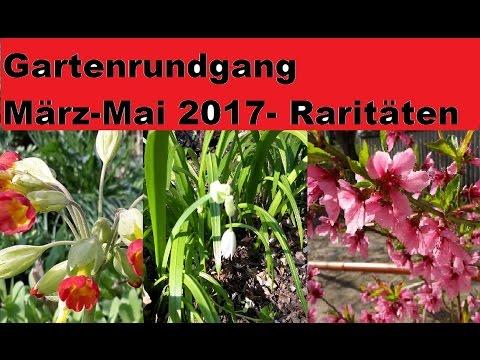 Gartenrundgang Teil 1/2 März-Mai 2017- Raritäten im Obst- und Gemüsegarten