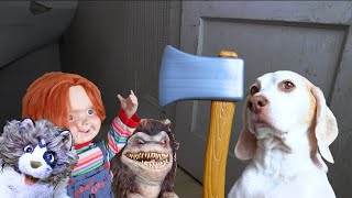 World's Cutest Assassin: Funny Dog Maymo Fight Scene Compilation