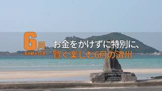 48befd06e19 VISITJEJU – 済州オフィシャル観光情報ポータルサイト