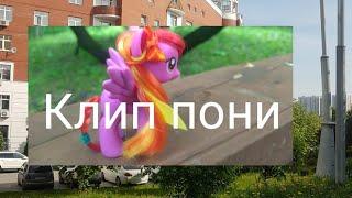 Клип пони (Crazy in Love) HV ponies