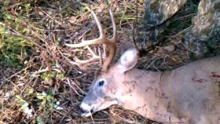 preview picture of video 'Ohio Deer Hunting Homewood Hunts Delaware, OH 11 point buck'